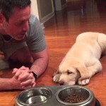 Meet The Adorable Puppy Who Actually Prays With His Owner Before Eating Dinner
