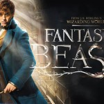 The Verdict On Fantastic Beasts And Where To Find Them DVD: Is It Worth Your Money??