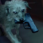 Meet Dog Wick: It's Pretty Much Just Like John Wick But All About An Assassin Dog