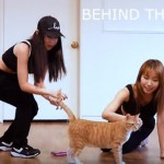 Do Yourself A Favour And Watch These Two Girls Dance With Their Cats