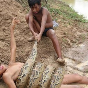 These Two Brothers Decided To Catch A Massive Snake In A Canal. The Result Will Make You Cringe!