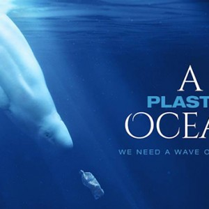 Featured Event Of The Day:  A Plastic Ocean – Free Screening