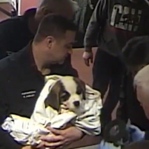 These Heroic Officers Managed To Save A Choking Puppy In A Police Station
