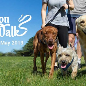 Featured Event Of The Week: RSPCA Million Paws Walk 2019
