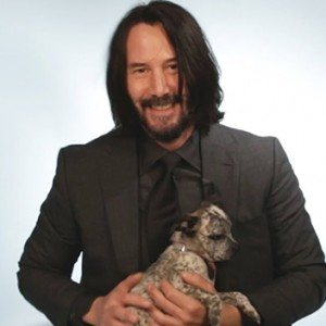 Watch Keanu Reeves Play With Puppies While Answering Fan Questions
