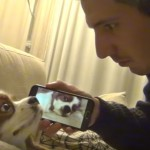 This Man Decided To Give His Snoring Dog A Taste Of Her Own Medicine. The Result Was Hilarious