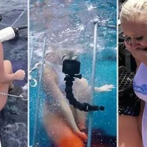 This Sexy Photohoot Went Horribly Wrong As The Model Ended Up Getting Bitten By A Vicious Shark
