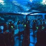 Featured Event Of The Day: Silent Disco At Sydney Aquarium