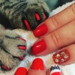 People Are Now Getting Their Nails Done Accompanied By Their Pet Cats