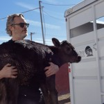 Joaquin Phoenix Just Rescued A Cow And Her Week-Old Calf From A Slaughterhouse