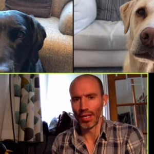 This BBC Broadcaster Had Nothing To Report So He Decided To Hold A Meeting With His 2 Dogs